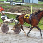 Harness racing drivers win from near and far
