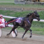 Noble wins Ladies Pace on Dad's track