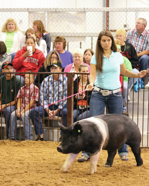 Submitted photo Sarah Young, 21, began her 4-H career as a cloverbud and continued to take projects to the fair each year, including market hogs. Now, Young manages livestock sales in the fair office.