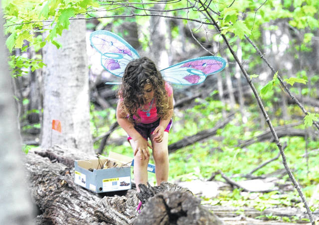 Barb Slone | Greene County News The 7th Annual Gnome and Fairy Festival presented a way for local children to create gnome and fairy houses in the forest at Evergreen Children's Center on May 12. Greene County Master Gardeners and Beavercreek Girl Scouts hosted the free event.