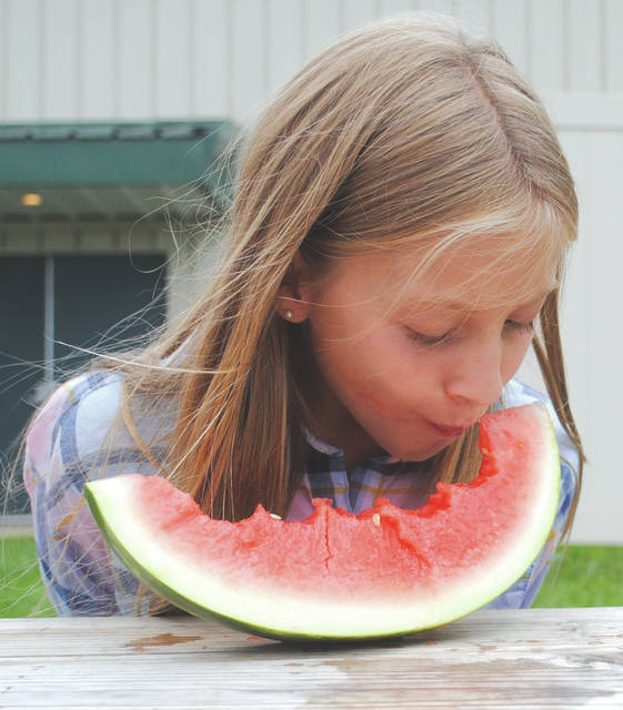Whitney Vickers   Greene County News The watermelon eating competition at the Greene County Fair was held July 31. Participants had to sit with their hands behind their back and eat the juicy fruit down to the rind. Whoever could do so the fastest in their age category was declared the winner.