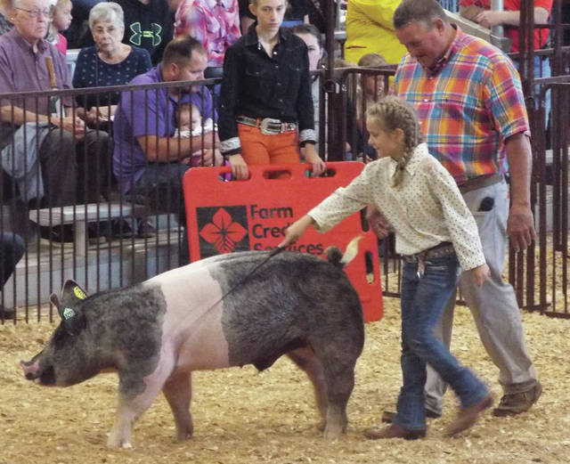 Aubrey Lide competes in the Stimulus class. This class allows her to raise and show a market hog for the first time.