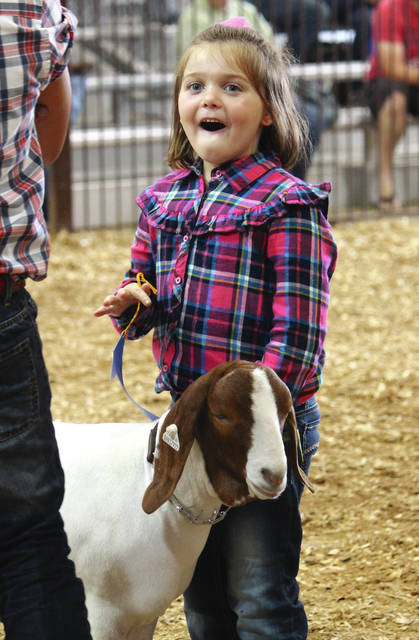 Anna Bolton | Greene County News Hadley Sargent reacts as she's handed a 1st place ribbon in the 6-year-old-class of Pee Wee Goat Showmanship Aug. 1 at the Greene County Fair.