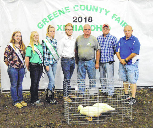 Reserve Champion Ducks The Reserve Champion Market Ducks were shown by Ryan Lapchynski for $300 to Greene County Cattlemans, Sunrise Cooperative and Greene County Youth Activity Fund.
