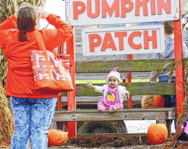 Young's Fall Farm Pumpkin Festival highlights all kinds of pumpkin activities and treats.
