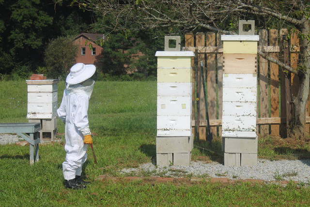 Anna Bolton | Greene County News Stewart Kroh, 11, appraoches the apiary in his backyard in Cedarville where he has six beehives.