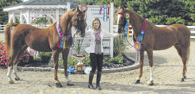 Scott Halasz | Greene County News Reagan Webb with Chloe (right) and Rowdy (left). Webb won three national horse show titles, giving her triple crown status. She trains at Cape Cod Equestrian Center in Sugarcreek Township.
