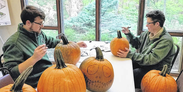 Photos courtesy of GC Parks GCP&T naturalists Jared Merriman and Mel Grosvenor, left to right, create templates for carving on the pumpkins to prepare for the Pumpkin Glow.