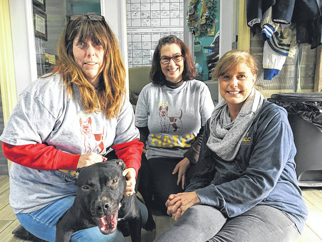 Natalie Jones | Greene County News Part of HALO's team (left to right) working to make dogs deemed unadoptable become adoptable. Regina Willen (founder), Tonya Charles (volunteer and foster), and Cathy Brown (public relations director).