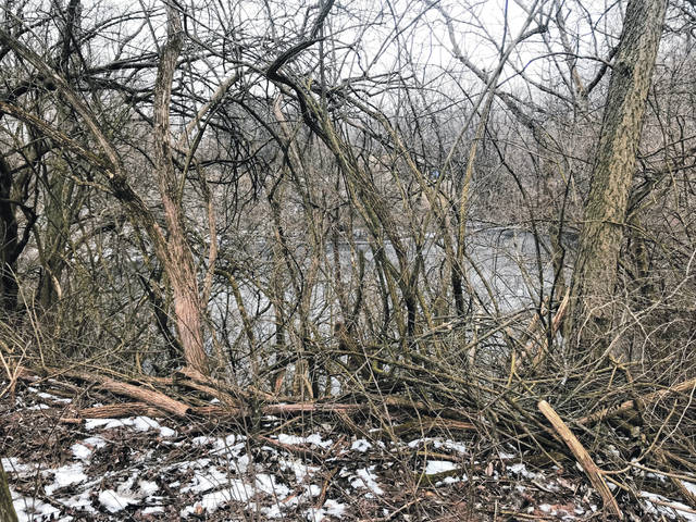 Anna Bolton | Greene County News Emergency crews used a rope to pull two teenagers out of an icy pond surrounded by trees and thick underbrush March 8.