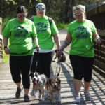 Dogs, humans invited to Breaking Out 5K