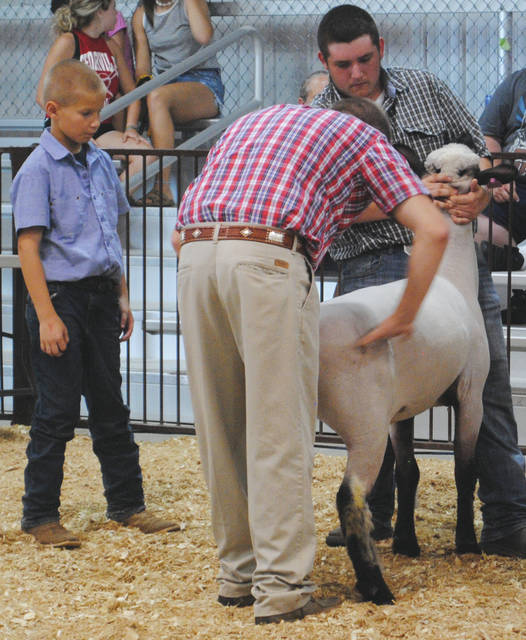Wyatt Percival (left) in the show ring while the judge (center) observes his sheep with the assistance of Grady Page (right).