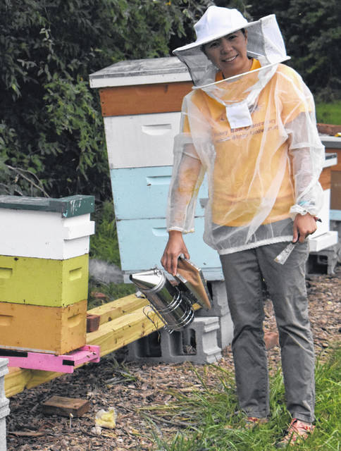 Dr. Hongmei Li-Byarlay uses a 'smoker' as she works with the bees.