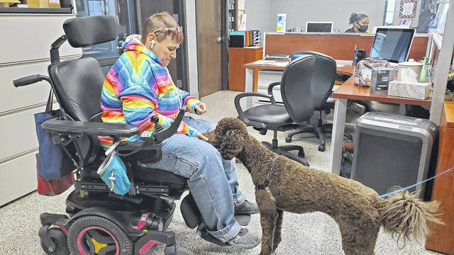 Photos courtesy 4 Paws For Ability Verity the poodle investigates the electric wheelchair CEO Karen Shirk uses. This wasn't an interruption of daily activities; it was a learning moment for the dog.