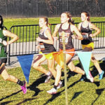 Area schools compete at state XC meet