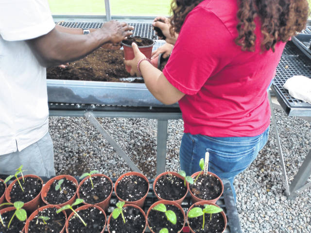 """Darryl McGee 
