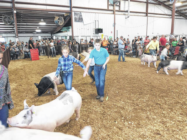 Photos by Darryl McGee   Greene County News Caden Church does not allow blindness to stop him from participating in Greene County Fair's Market Hog Show.