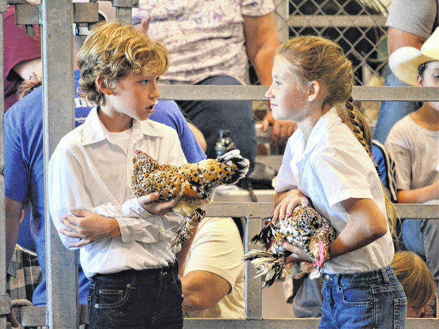 Photos by London Bishop | Greene County News Sam and Emma Katter wait for the results of novice poultry showmanship together.