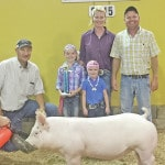 Caldwell wins Open Market Barrow Show