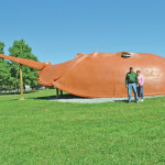 What is that thing? World's largest horseshoe crab in Hillsboro