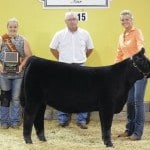 Vanzant shows grand champion heifer