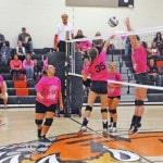 Lady 'Cats dominate Fairfield