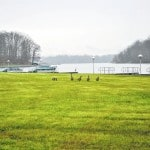 Wild about spring at local lakes, parks