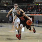 Fairfield Lions fall in district semifinal