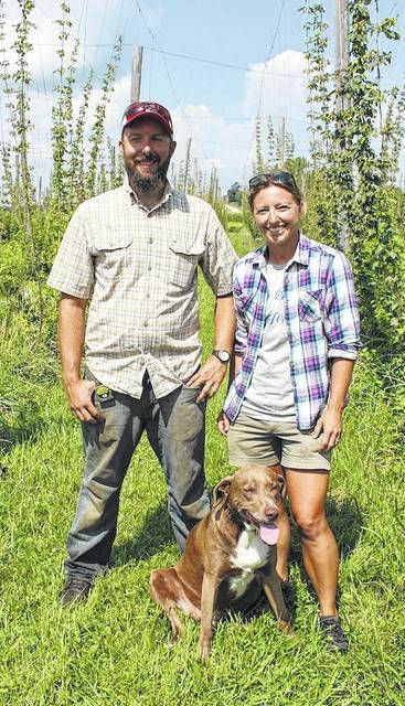 Brady Kirwan, Amanda Wilson and Brown Dog standing among the rows of vines at Old Dutch Hops, their hops yard in Highland County.
