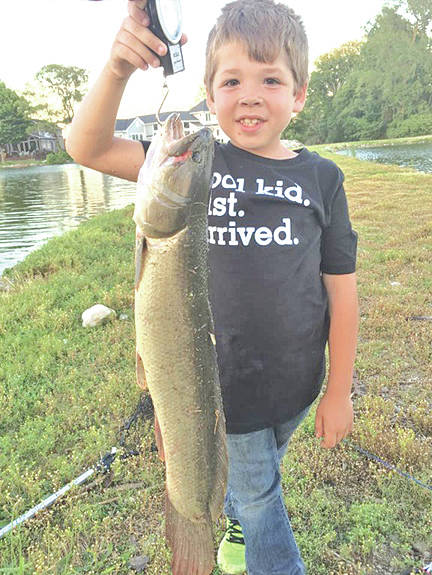 Brady Carter, the son of Jeremy and Amanda Carter, caught this 27.25-inch bowfin on June 10. He was recognized with a Fish Ohio Award from the Ohio Department Of Natural Resources Division Of Wildlife. Brady is ranked No. 1 in the Lake Erie region and No. 6 in the state Of Ohio with the catch. He has received a pin and a certificate for his achievement.