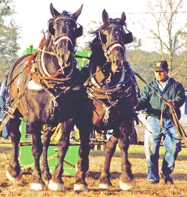 Draft Horse, Mule and Pony Field Days will be held Sept. 30 and Oct. 1 on Fawcett Road about six miles south of Peebles.