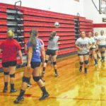 Fairfield Lady Lions volleyball preview