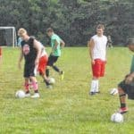 Fairfield Lions boys soccer preview