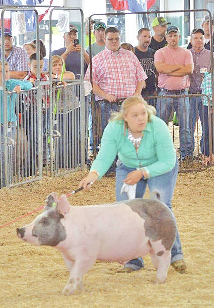 Lauren Grover is pictured in the show ring with her Reserve Grand Champion Market Barrow.