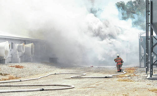 A firefighter battles a June 19 blaze that claimed approximately 5,000 swine in Fayette County.