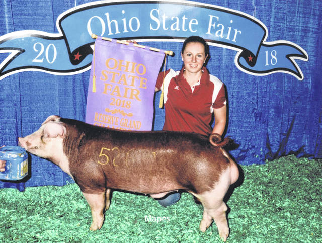 Kayla Overstake Dettwiller raised and exhibited the Reserve Grand Champion Hereford Boar at the 2018 Ohio State Fair. This is the 16th time that Dettwiller has raised and shown a champion at the Ohio State Fair. The boar's mother was raised by the Nathan Cook family, the Dettwillers' neighbors, and the sire was raised by the Corey Buckley family of Wilmington.