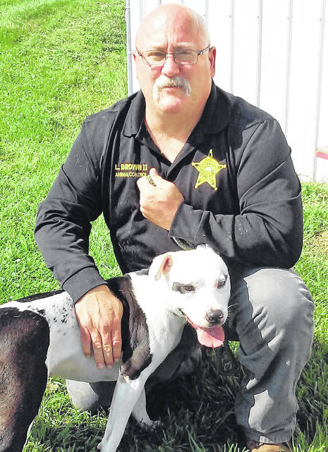 Deputy Animal Control Officer Lanny Brown is shown with Camilla, one of the dogs available for adoption at the Highland County Dog Pound.