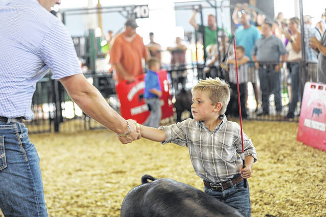 This youngster is shown shaking hands with the judge at a hog show at the 2018 Highland County Fair.