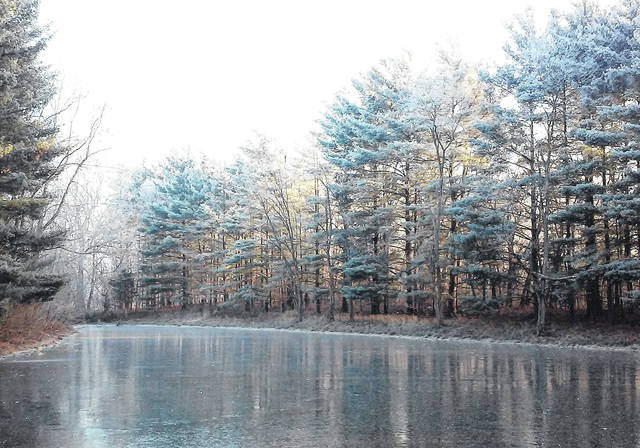 "The mysterious ""pogonip"" of Old Farmer's Almanac fame revealed its presence Tuesday morning at this ice-covered central Highland County farm pond. Large Scotch pine trees glistened in the crisp morning air just after sunrise."