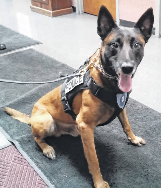 The Hillsboro Police Department is planning to purchase a different vehicle for its K-9 officer, Harley, pictured above.