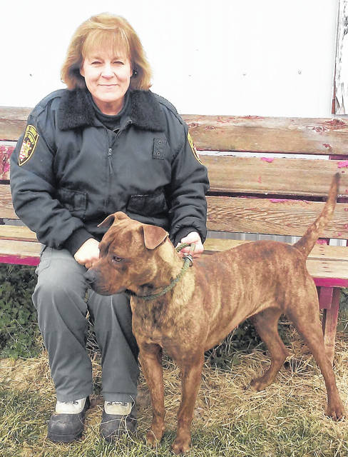 One of the dogs at the Highland County Dog Pound needing a good home is Betsy, seen here with Dog Warden Cathy Seifer. Betsy is a 1-year-old boxer/pit bull mix that Seifer described as being great with children and other dogs and well behaved.