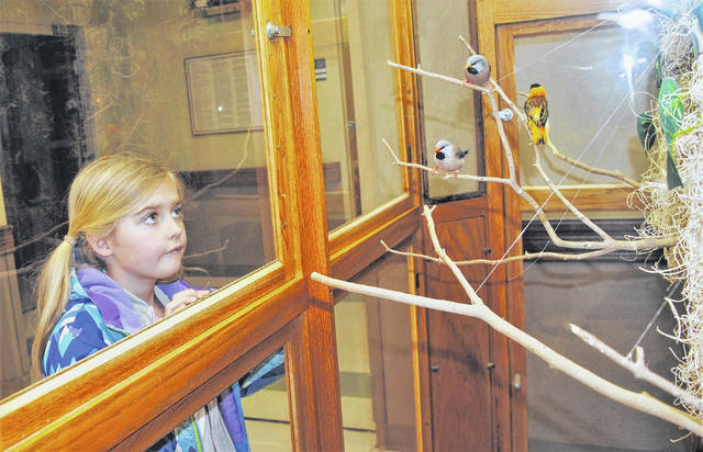 Eight-year-old Parker Wilkin gazes longingly at a trio of birds in the aviary at The Laurels in Hillsboro. Parker and her sister Piper joined the Hillsboro Jr. Women's Club Wednesday in distributing Valentine's Day flowers and vases to residents of the skilled nursing and rehabilitation center.
