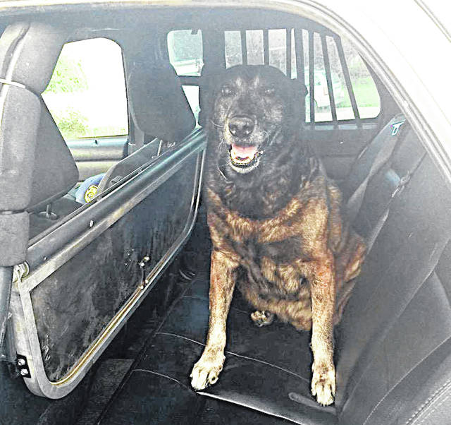 Former Greenfield Police Department K-9 Sando is pictured in the back of a police cruiser.