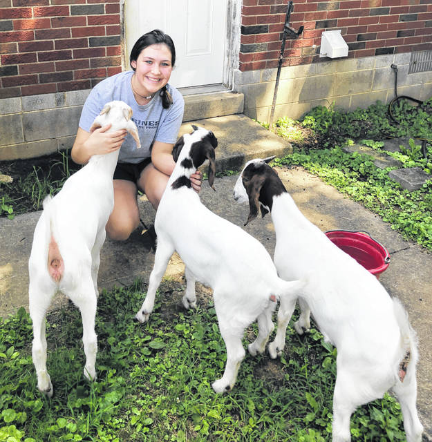 Hillsboro FFA member Loraleigh Mayhan is pictured with her SAE project animals.