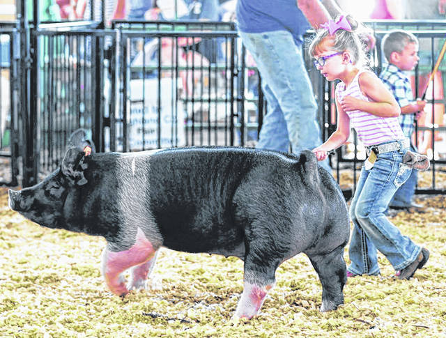 A young girls tries her hand in the show arena during the 2018 Highland County Fair.