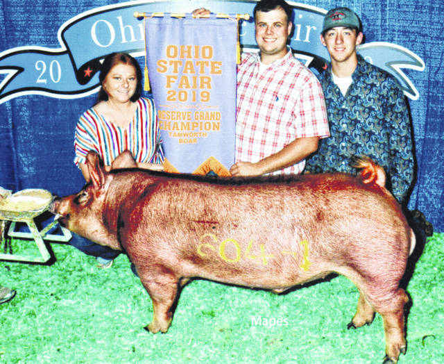 The Tamworth boar raised by the Overstake/Dettwiller family was selected as the Reserve Grand Champion at the 2019 Ohio State Fair. The families said they would like to thank Codey Jodrey, his family and his friends (pictured) for exhibiting the boar.