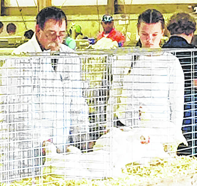 Allie Crago exhibits her chickens at the 2019 Highland County Fair.
