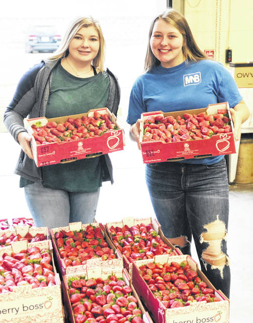 On Feb. 4 the Hillsboro FFA began selling strawberries. Flats of strawberries contain eight pints. Orders are due by Feb. 14, and strawberries will be delivered the week of March 2. Money from the fundraiser pays for different activities the FFA participates in such as conventions, meetings, camps and more. Last year, Ashlie Hillyer was the number one seller with approximately $700 worth of sales. Contact the Hillsboro FFA for more information at ffa@hillsboro-indians.org or 937-393-3485 ext. 1580. Pictured are Emma Parry and Christine.