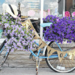 Bikes are in bloom