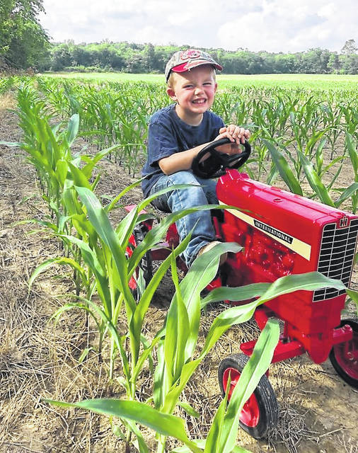 "The old farmers' adage ""knee high by the Fourth of July"" is a reality for little Ryan Bennington. The 4-year old son of Brad and Elizabeth Bennington of Hillsboro is a farmer through and through, according to his parents, who say he is color blind when it comes to makes of tractors. His favorite make at the present is Fendt tractors, and his grandmother Karen Bennington told The Times-Gazette that he is always ""checking his crop"" to see how much it has grown, and can usually be seen chewing on a piece of Timothy just like his Dad."